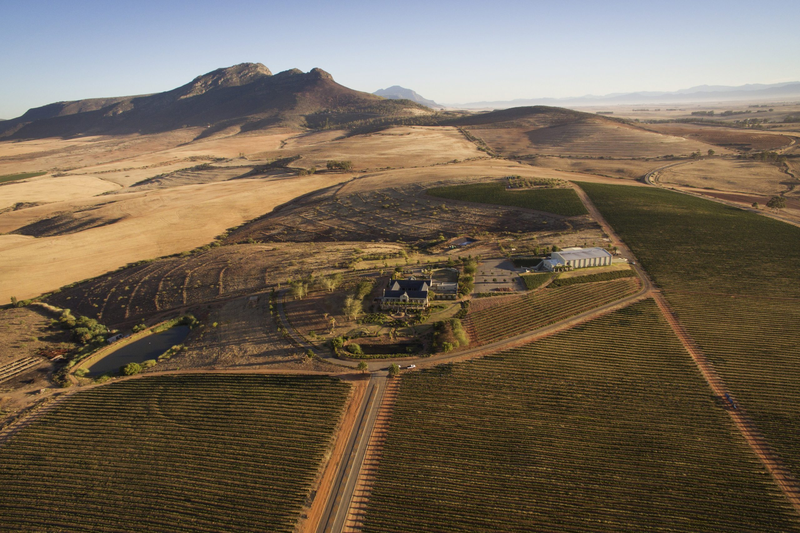Bacon And Hartzenberg Families Join Forces At Helm Of Org de Rac Wines photo
