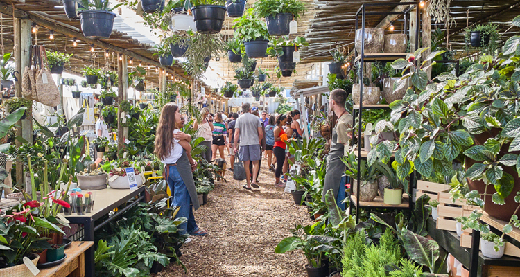 The 20 Best Markets In Cape Town photo