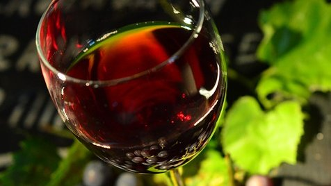 Growing Grapes The Australian Way Has Taken Wine Innovation To The World photo
