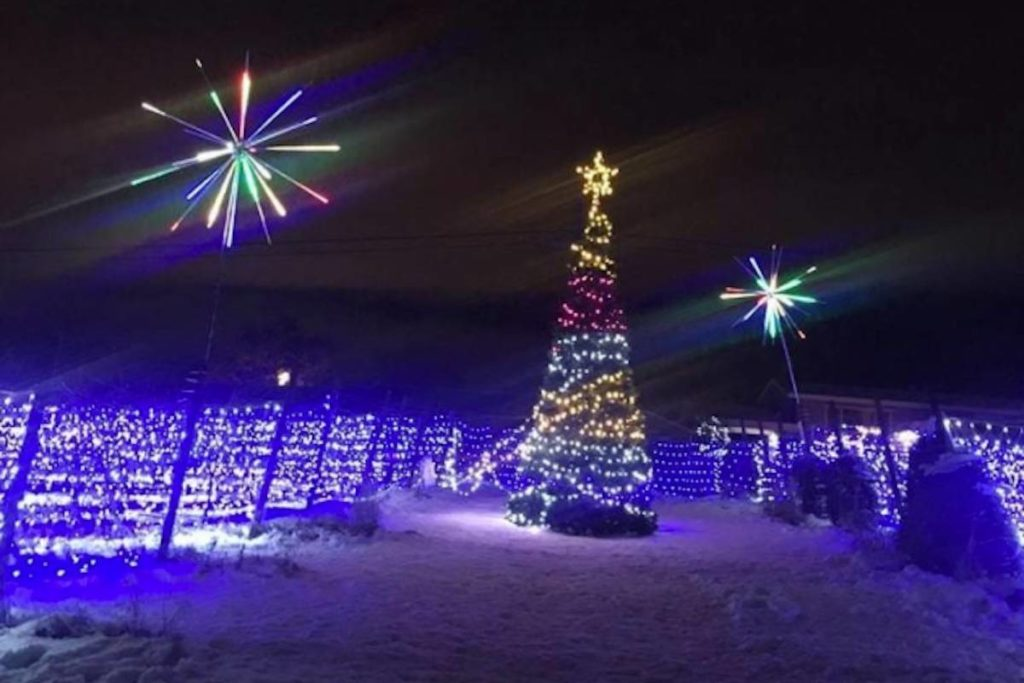 West Kelowna Winery Shines Bright For The Holidays photo