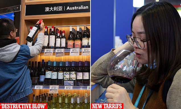 China Declares 'cheap' Aussie Wine Will 'crater' Over Trade Tariffs photo