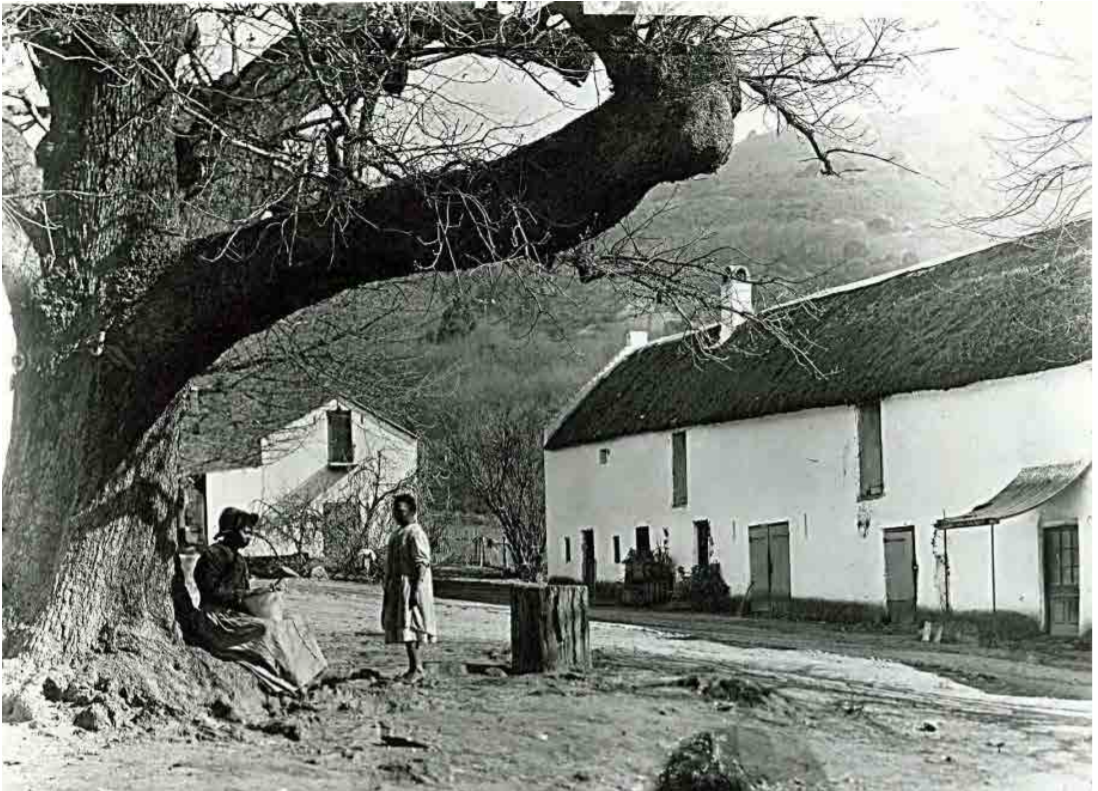Sa Wine History: Not-so-humdrum Paarl photo