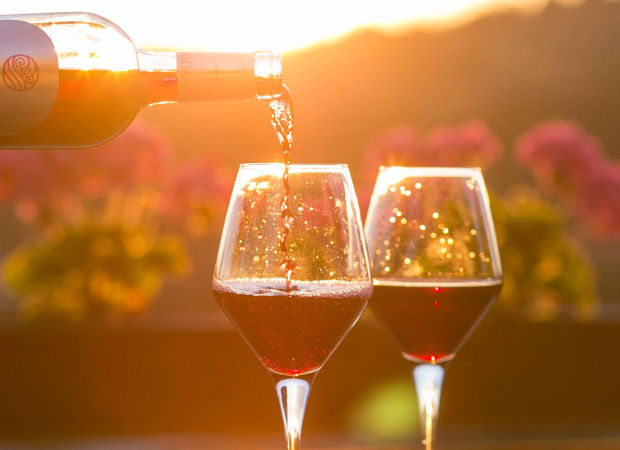 6 Wine And Dine Estates To Visit When In The Robertson Wine Valley photo