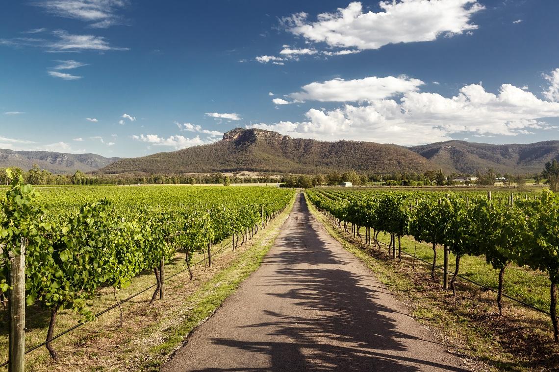 Wine Lovers Urged To #chooseaustralianwine This Summer photo