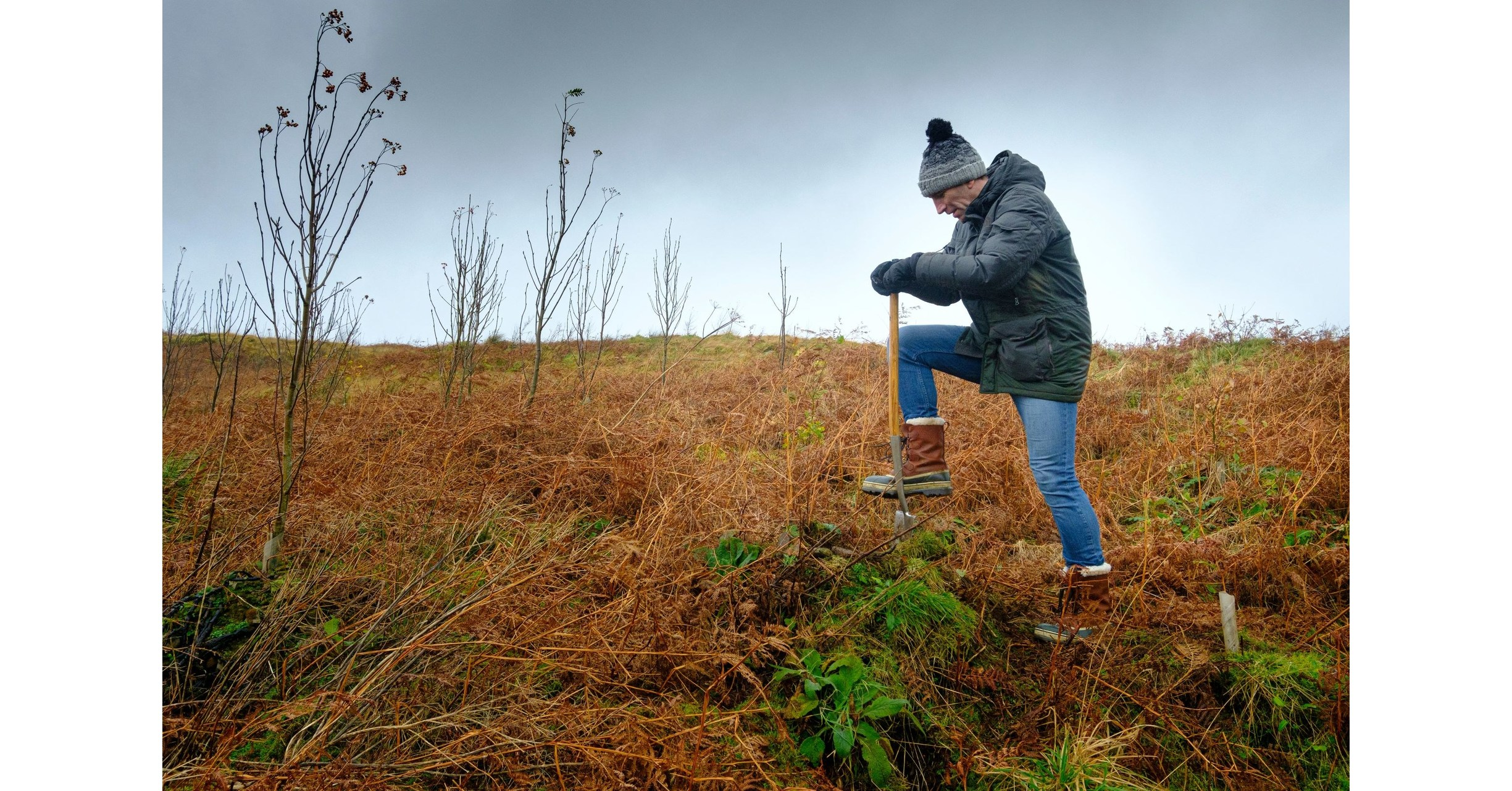 Johnnie Walker Gets Into The Festive Spirit By Giving The Gift Of One Million Trees photo