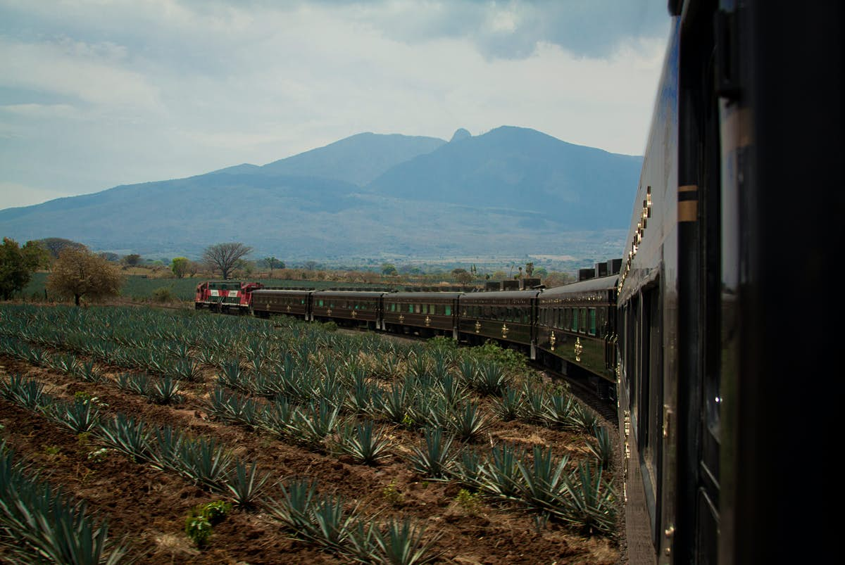 Mexico's Beloved Tequila Train Unveils New Wagon With Incredible Views And Cocktails photo