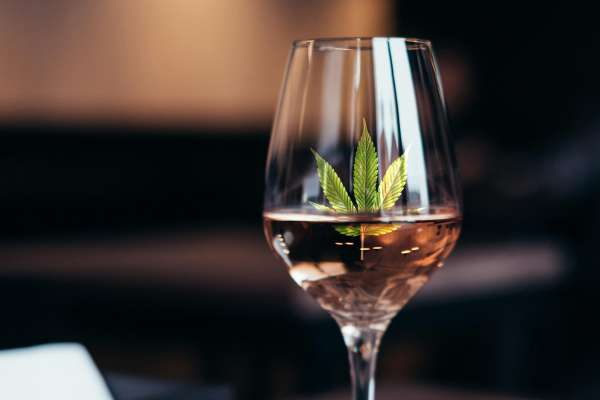 What Alcohol Brands Need To Know About Cannabis Consumers photo