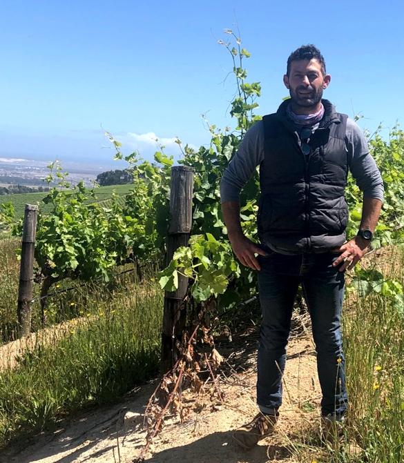 Tim James: Karibib Vineyards And Wine Craft In The Polkadraai Hills photo