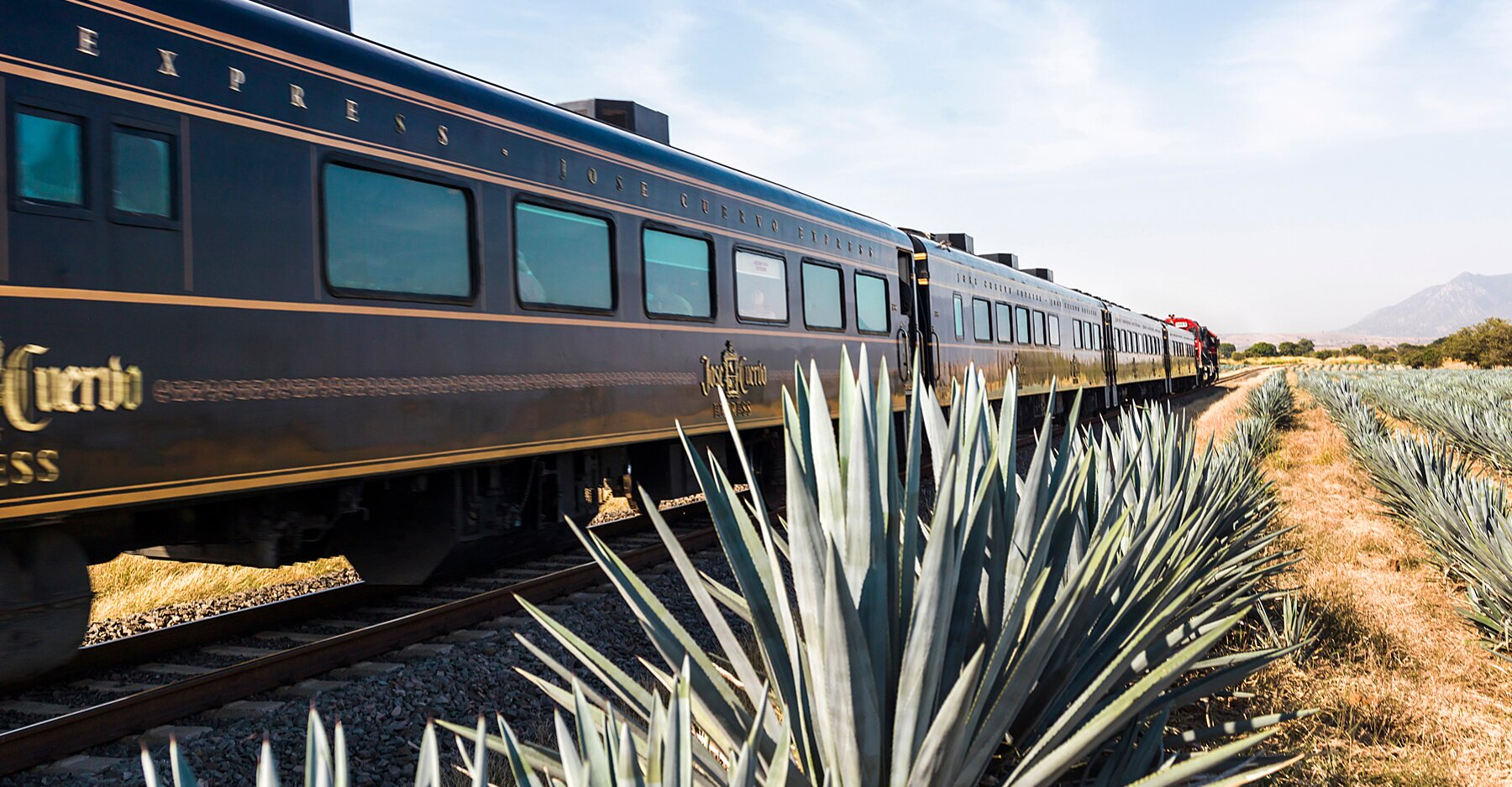 The All-you-can-drink Tequila Train Now Comes With Custom Cocktails And An Elevated Open-bar Experience photo