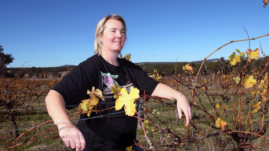 New Food & Wine Festival Focus On Tastes Of Mt Barker photo