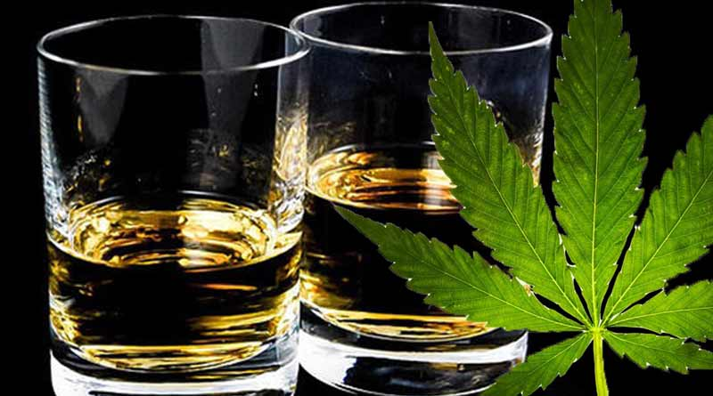 Distell Invests In Dagga Business Amid Crippling Booze Ban photo
