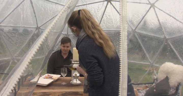 Fraser Valley Winery Adapts To Covid-19 With Wine Tasting Domes photo