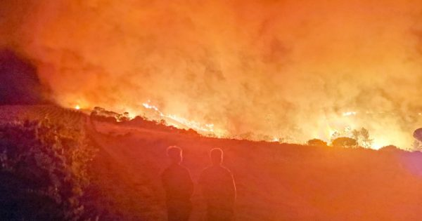 Breaking: Firefighters Battle Blaze At Historic Wine Estate photo