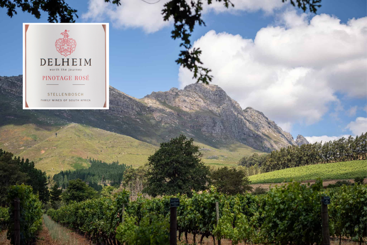 South African Winemakers Survived Three-year Drought Before Pandemic Struck photo
