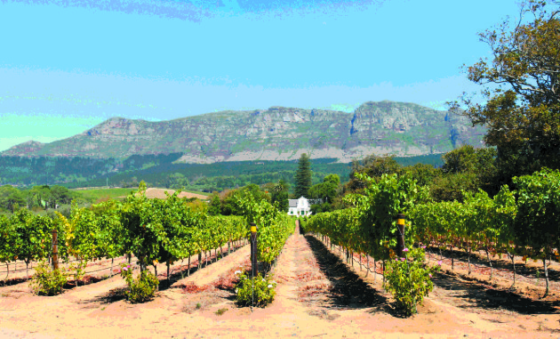 Extra Sa Fundraising Tasting Due To Demand photo