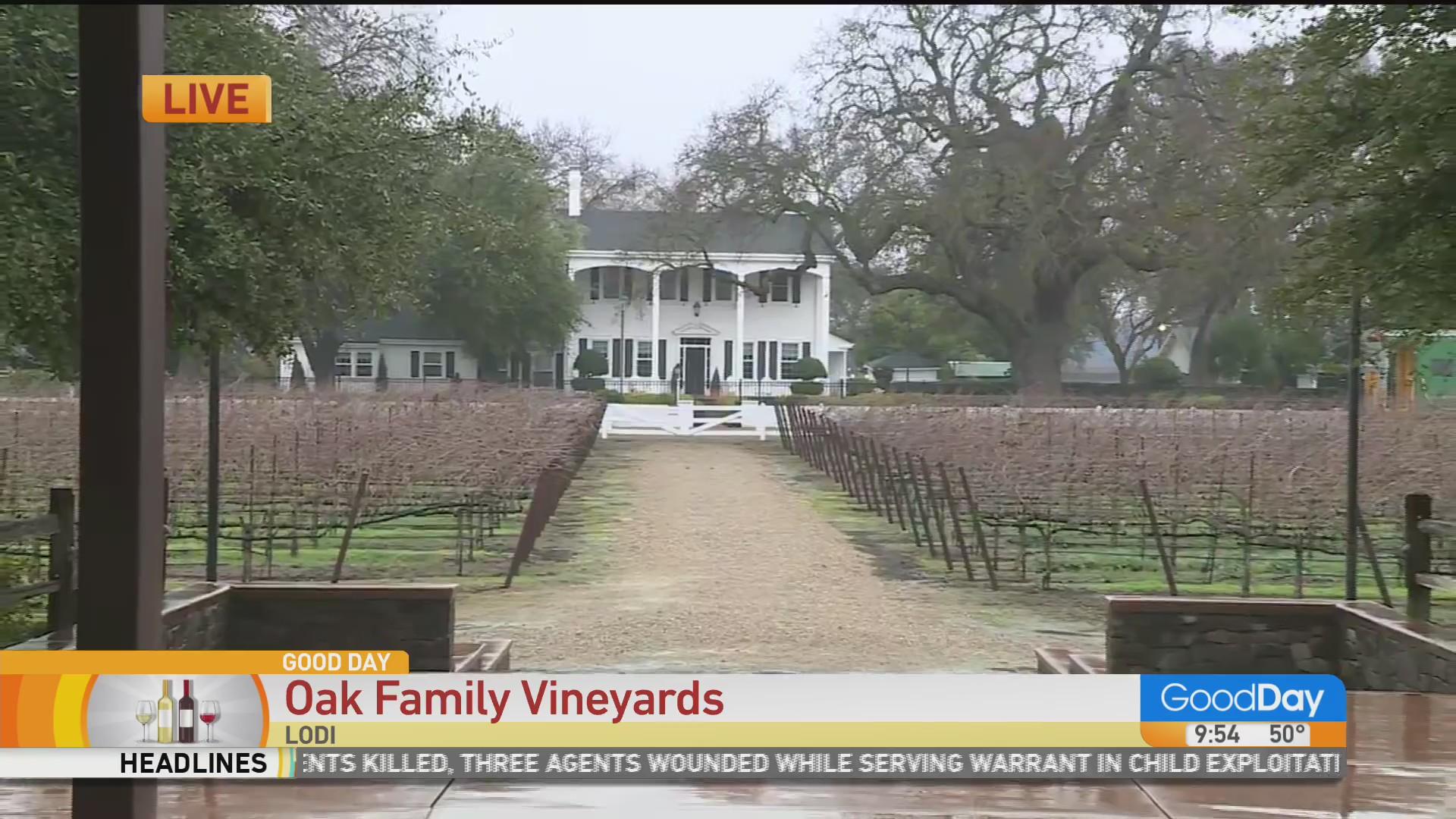 Oak Farm Vineyards In Lodi photo