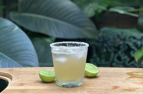 The Margarita: A Classic photo
