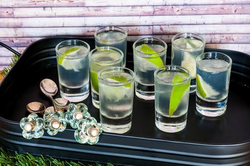 How To Make A Proper Gin Shot photo