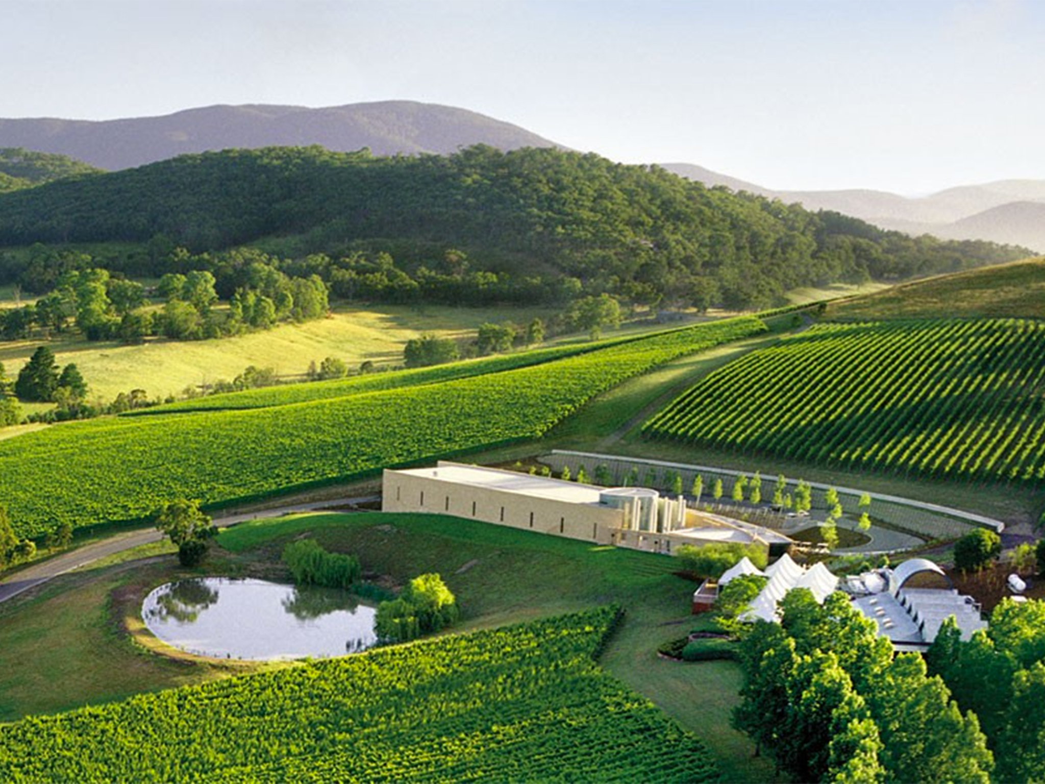 The Best Wineries In The Yarra Valley photo