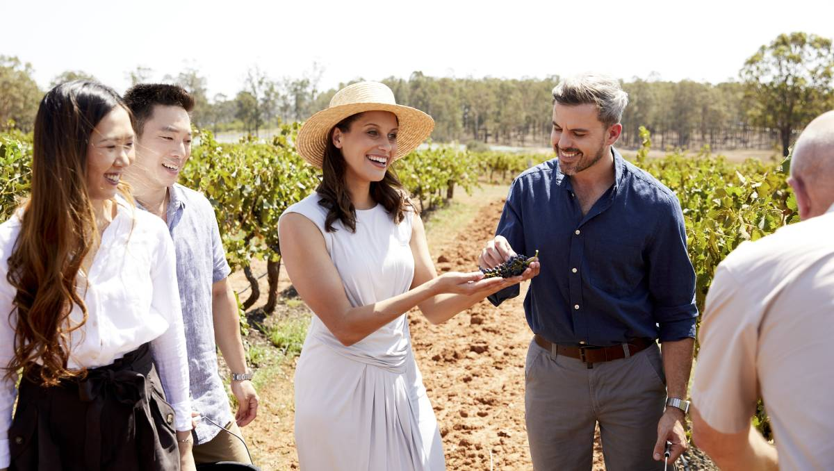 Raising A Glass To Pioneering Wineries Of Australia's Oldest Wine Region photo