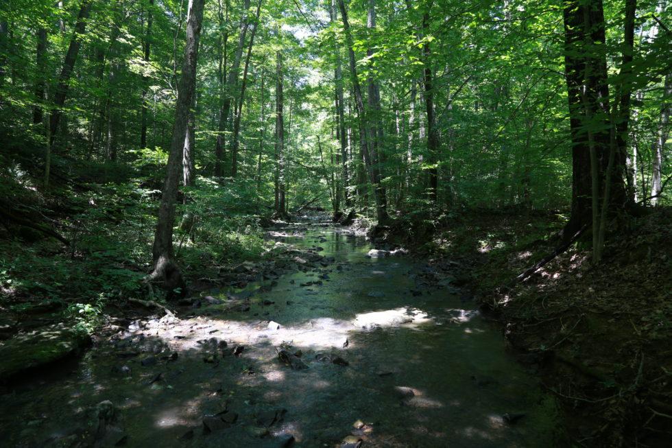 Lg&e Records Show Bernheim Pipeline Would Primarily Benefit Jim Beam photo