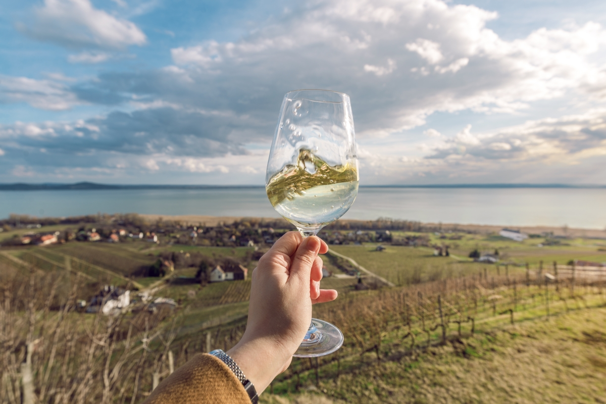 5 Vineyards In India That Will Change Your Mind About Indian Wine photo
