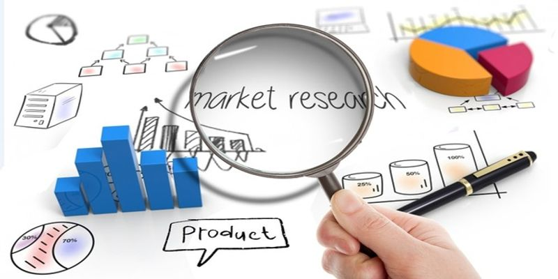 Black Sapote Market Has Huge Demand In Worldwide photo
