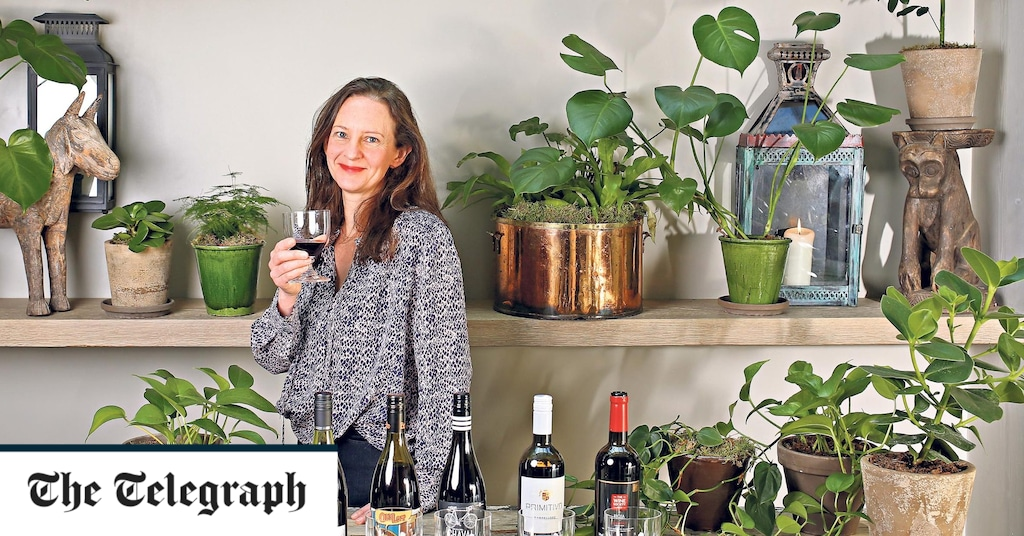 50 Of The Best Spring Red And White Wines For £10 And Under photo