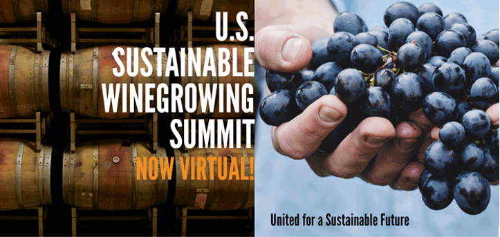 Registration Open For The 2nd Us Sustainable Winegrowing Summit photo