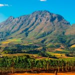 5 Amusing Facts About Stellenbosch Wine Routes photo