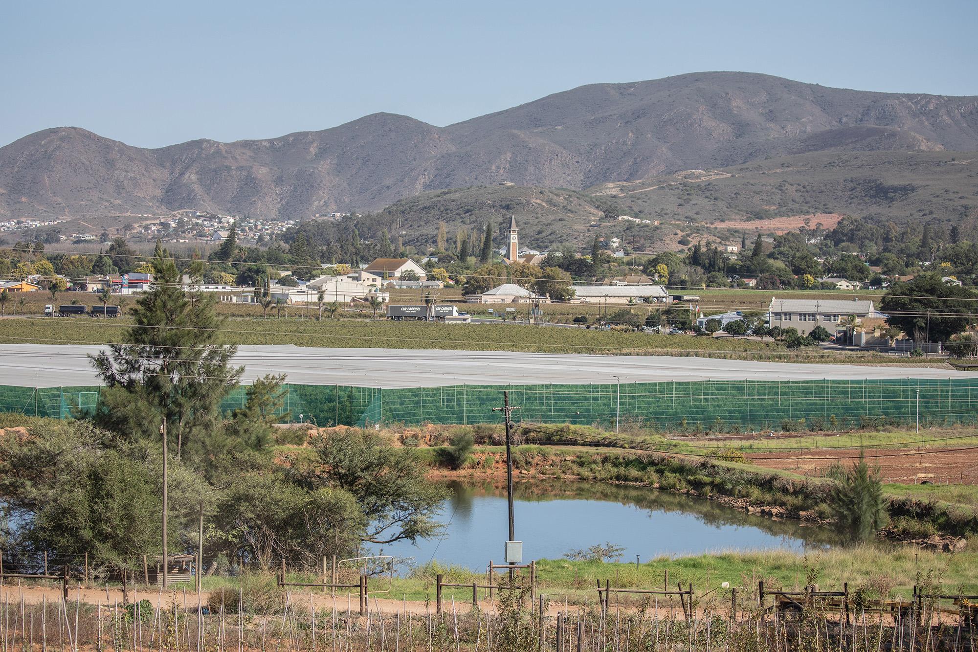 Hunt For Escaped Crocodiles Continues In The Cape Winelands photo