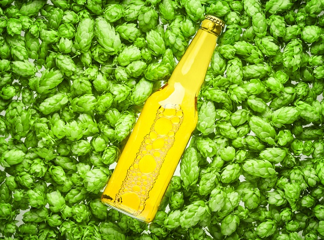 Heineken Sets Out Plans To Be Carbon Neutral Across Value Chain By 2040 photo