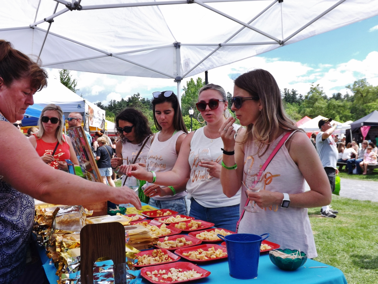 Adirondack Wine & Food Festival 2021 Postponed photo