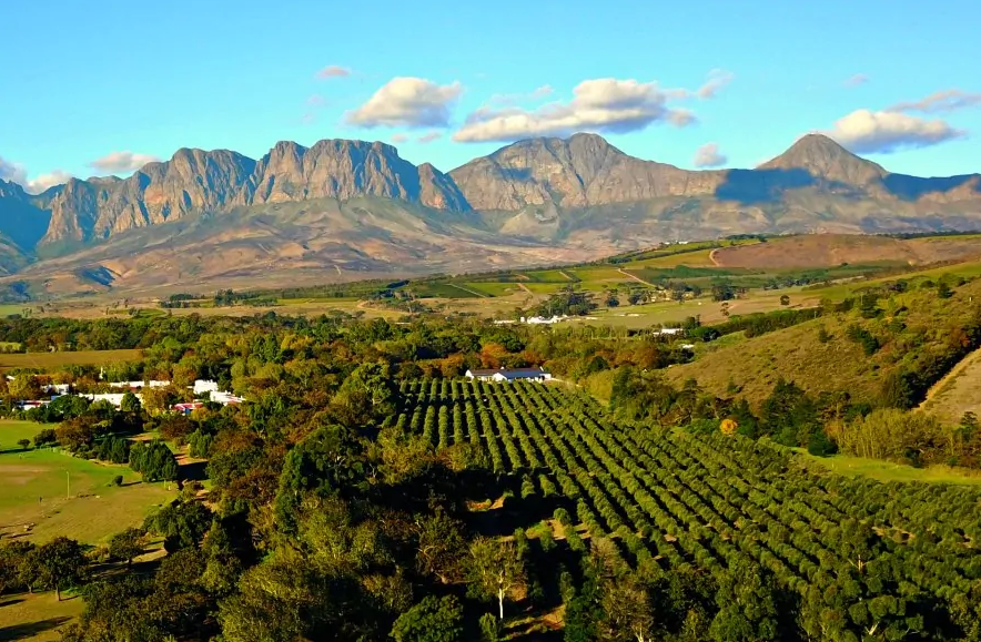 Stellenbosch Wine Routes Celebrates 50 Years Of Innovation, Leadership And Epic Wineland Experiences photo