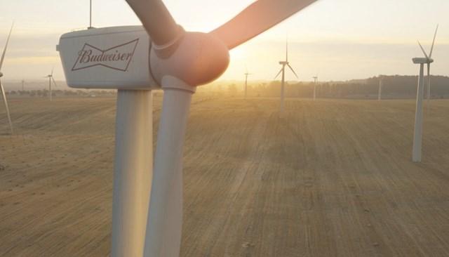 Budweiser Uk Goes 100% Wind And Solar photo