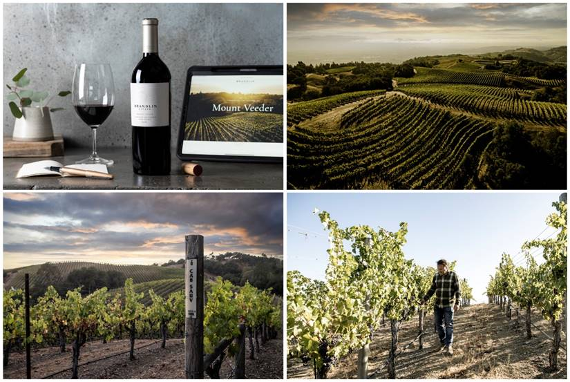 Mount Veeder's Brandlin Winery Renamed Brandlin Estate, Unveils New Branding And Website photo