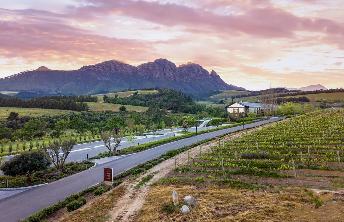 Top 10 South African Red Wines photo