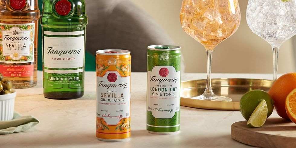 You Can Now Get Tanqueray Gin And Tonic Cans In Two Flavours photo