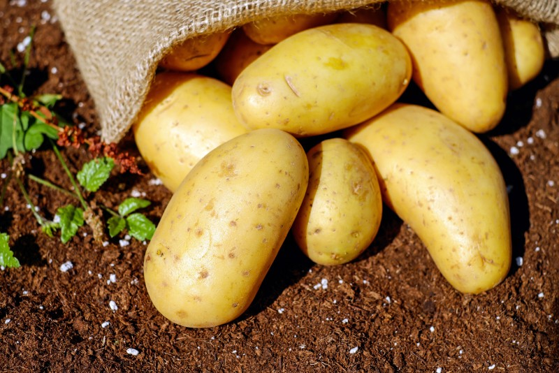Fighting COVID-19 And Heart Disease With Potatoes photo