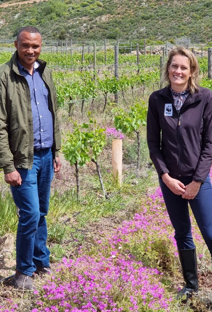 WWF Honours De Wetshof Wine Estate With First Conservation Pioneer Award photo