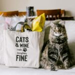 Cats And Wine Make Everything Fine photo